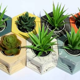 Colourful Planter Overview