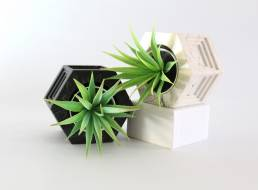 Planters on Side 2